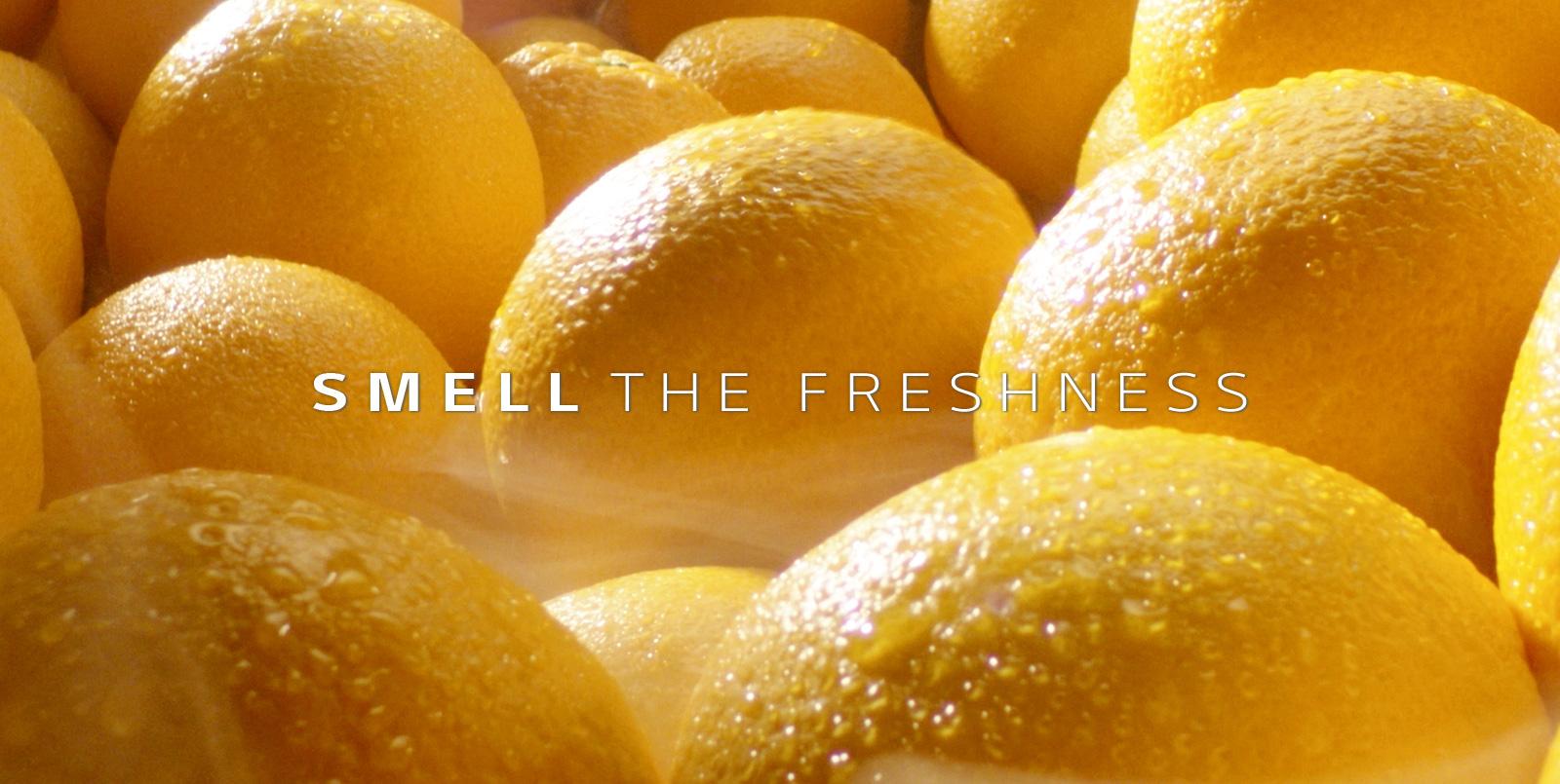 a close up of a bowl of oranges