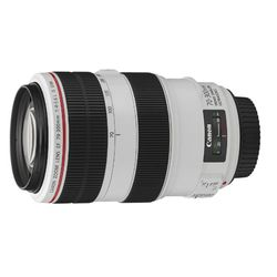 Canon EF70-300mm L IS USM