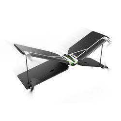 Parrot Swing & Flypad