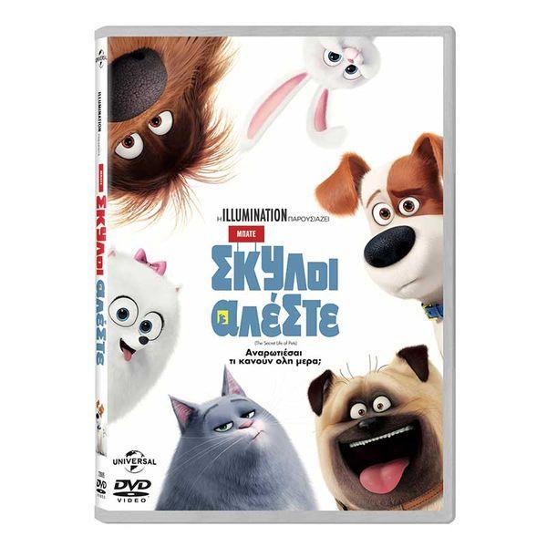 Μπάτε Σκύλοι Αλέστε (DVD) Ταινία & Μαγνητάκια