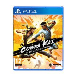Cobra Kai The Karate Kid
